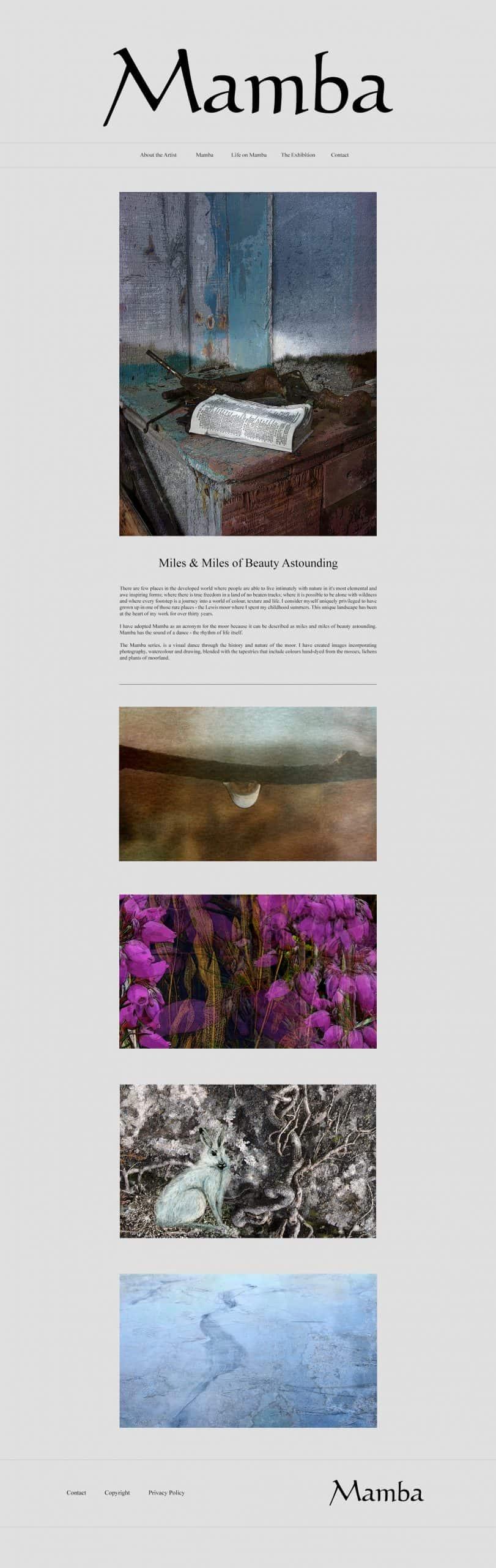 Website Design by Jade Starmore